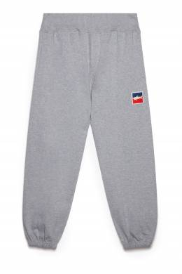 Серые брюки с эластичным поясом Paul & Shark 2321127753