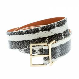Dsquared2 Two Tone Python Belt Size 95 CM 175544