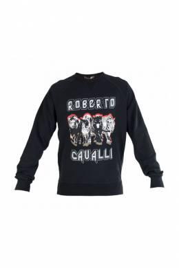 Свитшот Roberto Cavalli 84821
