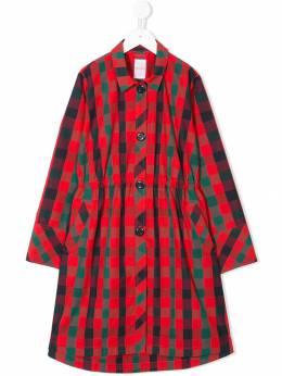 Familiar collared raincoat 483150