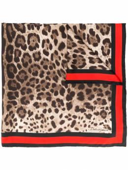 Dolce & Gabbana шейный платок с леопардовым принтом FN090RGDQ76