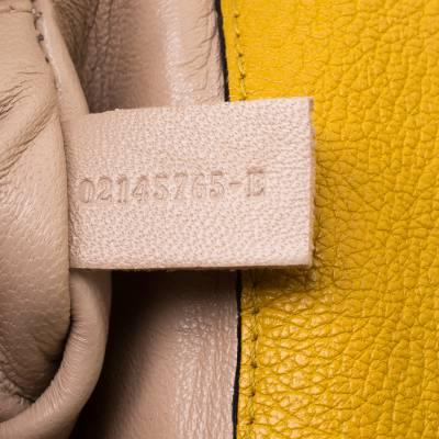 Chloe Mustard Leather Small Elsie Shoulder Bag 187023 - 7