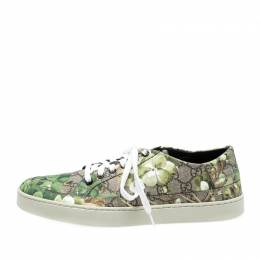 Gucci Green/Beige Bloom Print GG Supreme Canvas Lace Up Low Top Sneaker Size 43 220874