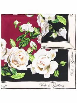 Dolce & Gabbana платок-фуляр с принтом FN092RGDR57