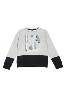 Джемпер Karl Lagerfeld Kids Z25137/M48 SS18